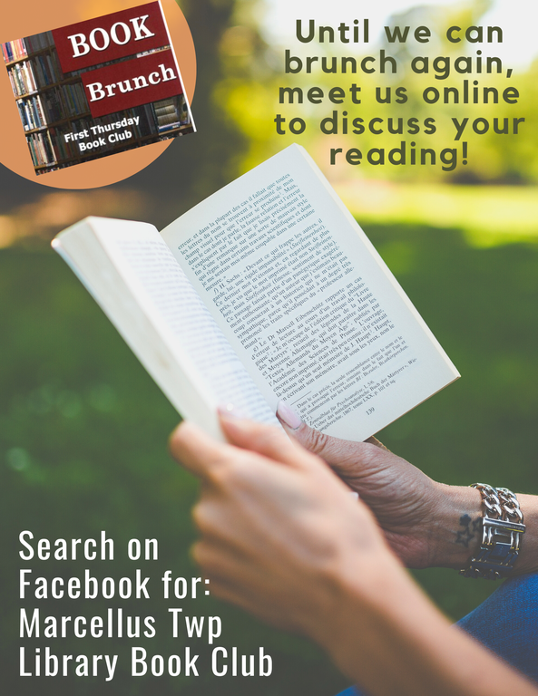 Facebook Virtual Book Club